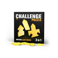 Challenging Puzzle №4 IQ Puzzle